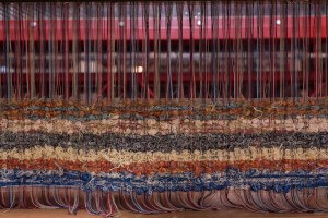 Lera's Rugs Strip